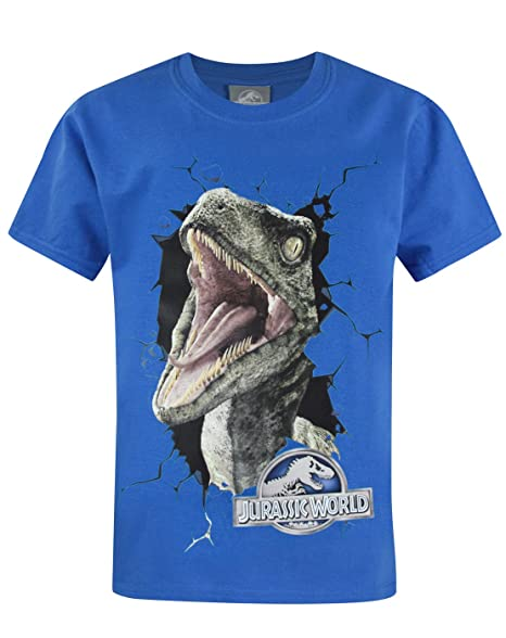 Official Jurassic World Raptor Kids T-Shirt (3-4 Years)