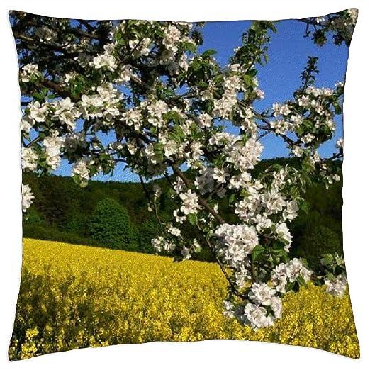 Flores de primavera - Funda de cojín (18: Amazon.es: Hogar