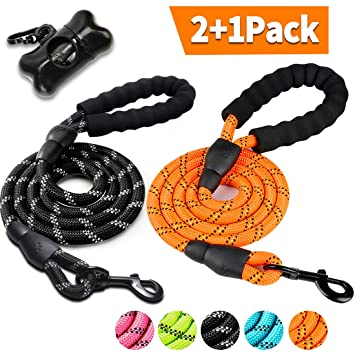 2 Pack Dog Leash 5 FT Thick Durable Nylon Rope with Padded Handle and  Reflective Surface – Multiple Color Options and Free Bag Dispenser