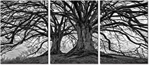 Visual Art Decor 3 Pieces Black and White Trees Canvas Wall Art Winter Oak Trees Branches Picture Nature Scenery Giclee Prints Framed and Stretched Premium Artwork for Home Living Room Bedroom
