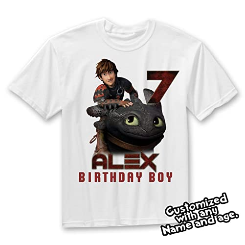 Amazon How To Train Your Dragon Birthday Shirt Family Shirts Parents Matching