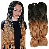 5 Pieces 2 Tone Ombre Braiding Hair Crochet Braids Synthetic Hair Extensions 24 Inch (Black/Brown#, 5pcs/Lot)