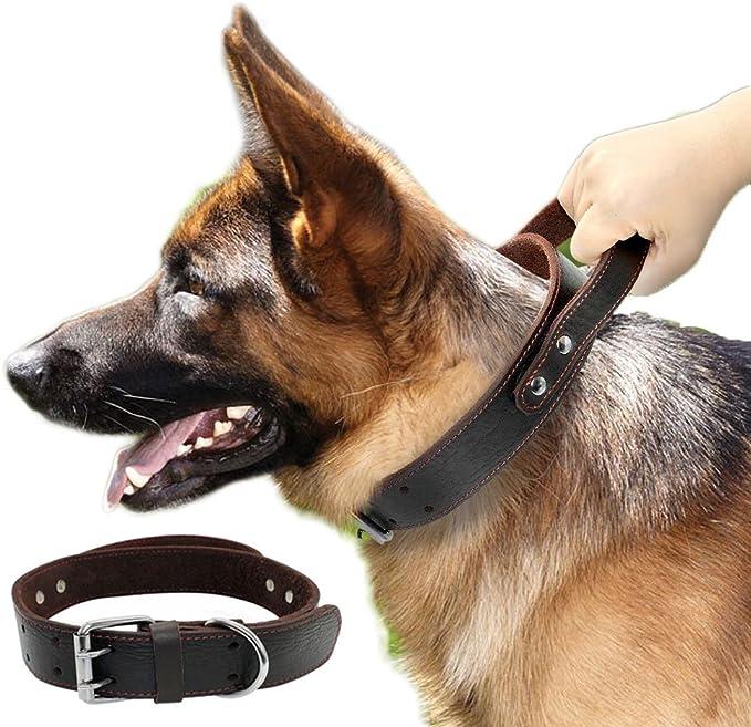 S Collar Perro Peque/ños Grandes Medianos Reflectante Collar para Perros Acolchado Suave Nylon Neopreno Ajustable Transpirable para la Caminata Diaria Corriendo Azul