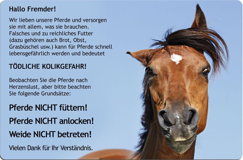 wetterfestes Boxenschild in grün mit Brandzeic Metall Stalltafel für Ihr Pferd