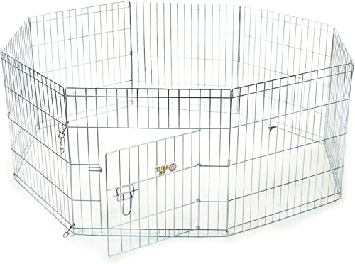 30 inch Exercise Pen By Majestic Pet Products Medium