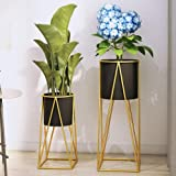 Green Plant Pot Rack Simple Wrought Iron Flower Stand Plant Rack Indoor Living Room Floor-Standing Green Dill Hanging Orchid,One set