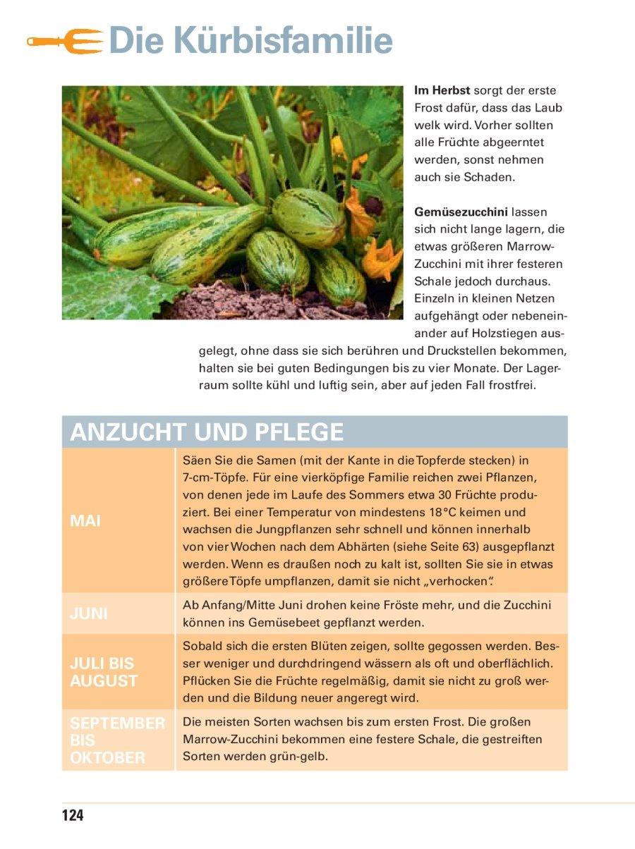 Gemüsegarten Anlegen Für Anfänger: Schlechte