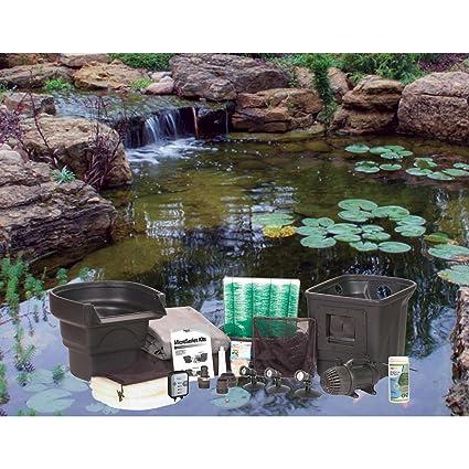 Aquascape 8 Ft. X 11 Ft. Ecosystem Garden Pond Kit
