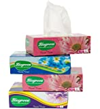 Biogreen So Soft Face Tissue Paper 2 Ply 100-Pulls (Pack of 4) Experience Hygiene
