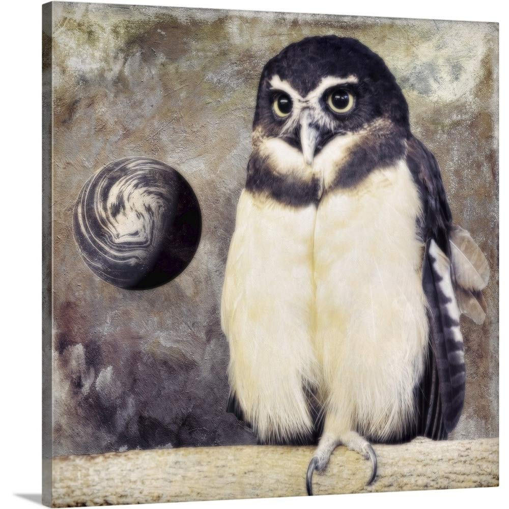 Color Bakeryプレミアムシックラップキャンバス壁アート印刷題名Moon Owl 36