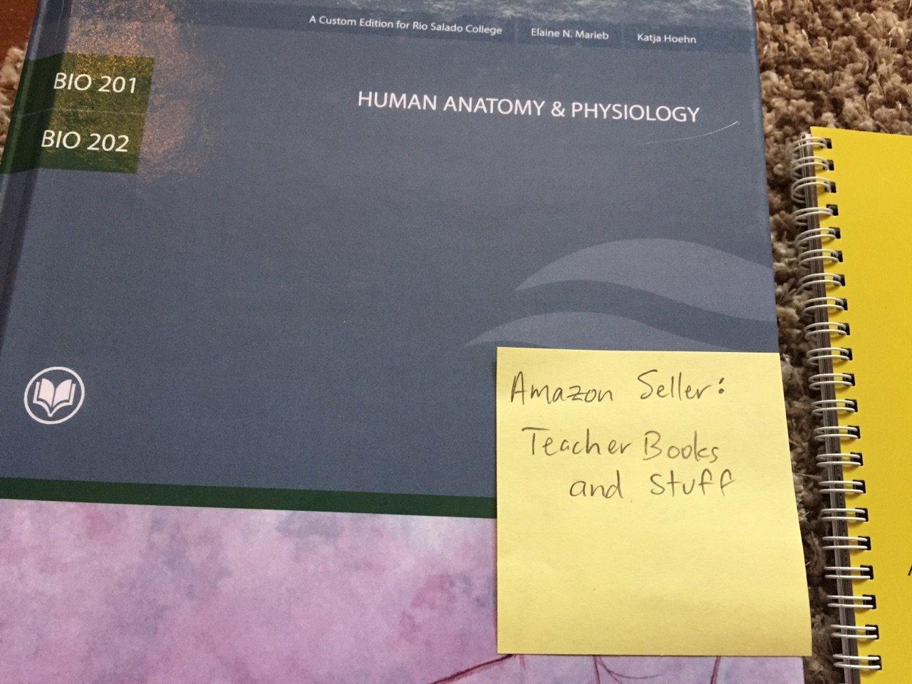 Workbooks » Student Workbook For Essentials Of Anatomy And ...