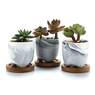 T4U 2.5 Inch Small Grey Ceramic Succulent Planter Pots with Bamboo Tray Set of 3, Marble Glazed Porcelain Handicraft as Gift for Mom Sister Best for Home Office Restaurant Desk Windowsill Decoration: Garden & Outdoor