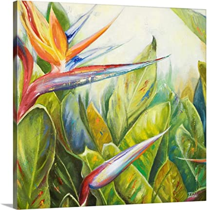 Amazon Com Bird Of Paradise Ii Canvas Wall Art Print 24 X24 X1 25 Posters Prints