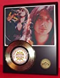 Steve Perry Gold Record Limited Edition Display