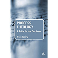 Process Theology: A Guide for the Perplexed (Guides for the Perplexed)