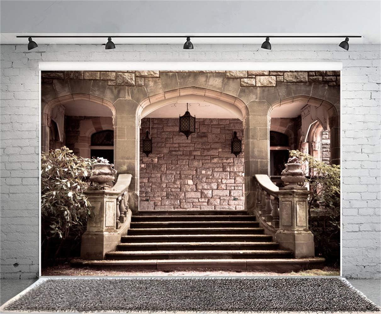 Vintage Stone Palace Pavilion Stairs Scene Backdrop Vinyl 10x8ft Old Castle Historical Cultural Architecture Black Lantern Background Wedding Shoot Tourism Resort Scenic Wallpaper Studio