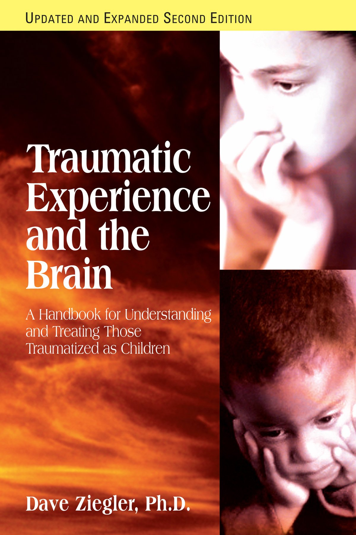 Traumatic Experience And The Brain: Dave Ziegler Phd: 9781935089421:  Amazon: Books