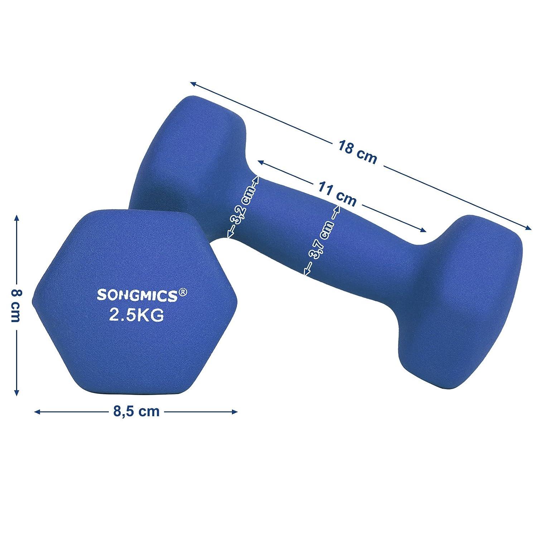 SONGMICS Juego de 2 Mancuernas para Gimnasio y Entrenamiento 2 x 0,5 kg SYL61PK