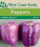 Pepper Seeds - Purple Beauty