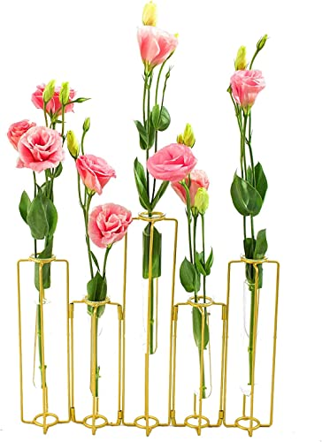 ST.LORIAN Decorative Glass Flower Vase Metal Stand,Hinged Bud Test Tubes Vases Display Set,for Home D cor Mother's Day Gift