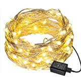 EShing 100LED 33ft String Lights, Plug-in Waterproof Decorative Fairy Lights, Firefly Lights with UL Power Adapter for Bedroo