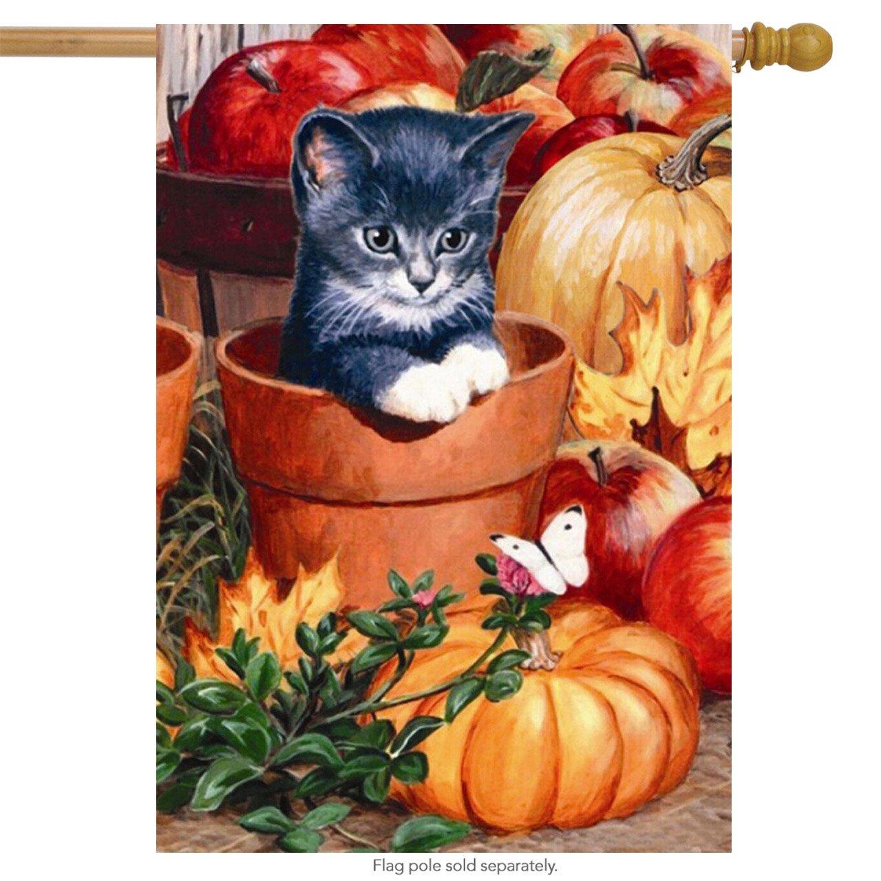 "Briarwood Lane Fall Kitten House Flag Apples Pumpkins Autumn 28"" x 40"""
