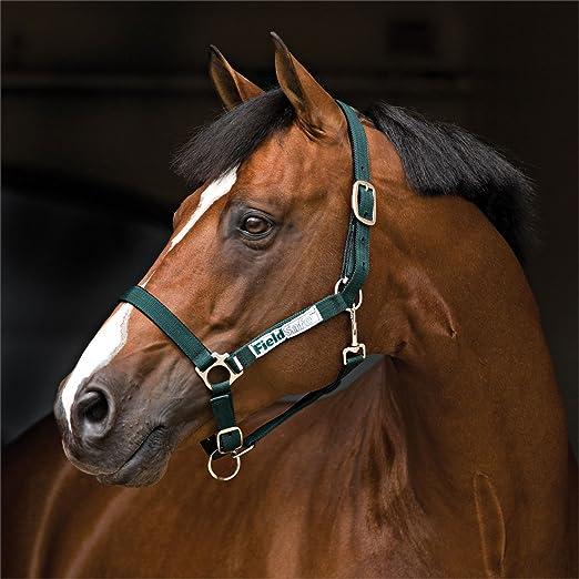 Horseware FieldSafe Headcollar