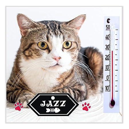 Tu Gato es Único - Imanes con la Foto de Tu Gato, Cachorro o Mascota Personalizados para Regalar a Tus Amigos y Familiares - ¡Alucinarán!