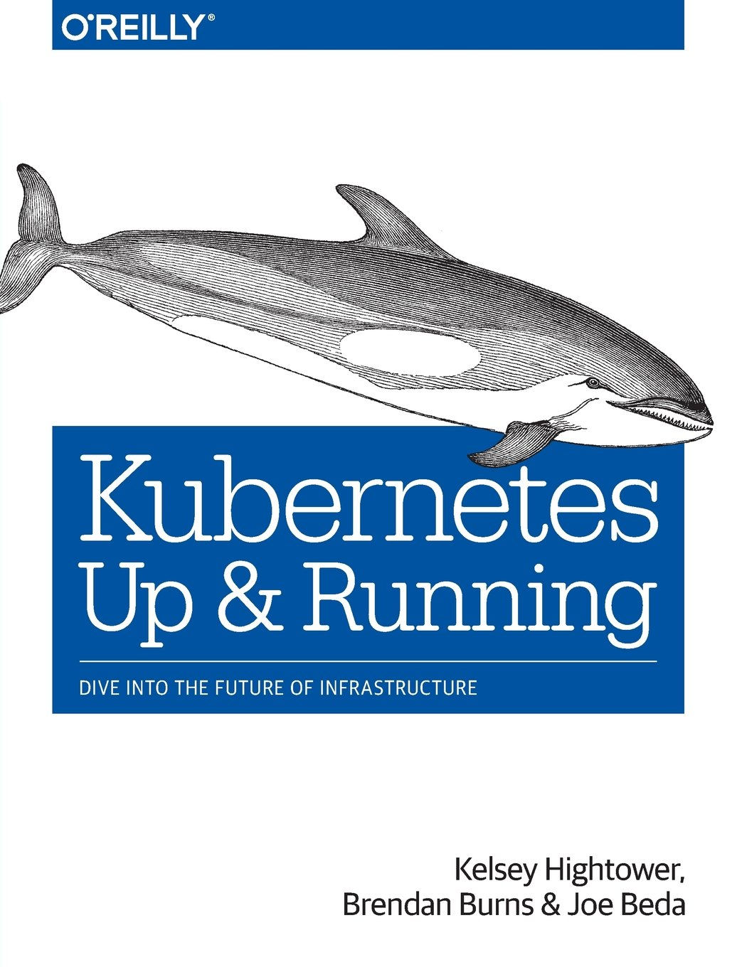 Kubernetes: Up and Running: Dive into the Future of