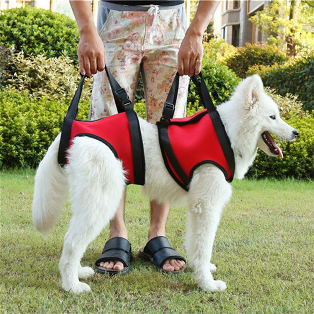 GFYWZ Dog Lift Support and Rehab Harness for Dogs with Weak Rear Legs Hind Leg Lifting Canine Aid Assist Sling,RedFrontleg+Backleg,L