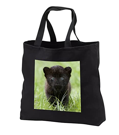 Amazon.com: Animales Salvajes – Black Panther Cub – Bolsas ...