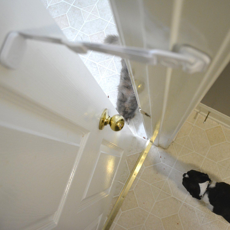 Gris Door Buddy Courroie de porte ajustable avec loquet Entr/ée pratique pour chats et adultes Une m/éthode simple pour emp/êcher votre chien d/'acc/éder /à la nourriture pour chat et liti/ère pour chat