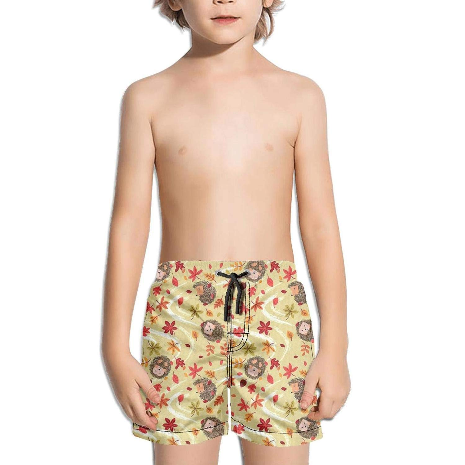 Lenard Hughes Boys Quick Dry Beach Shorts with Pockets Autumn Natural Blowing Leaves Hedgehog Swim Trunks for Summer