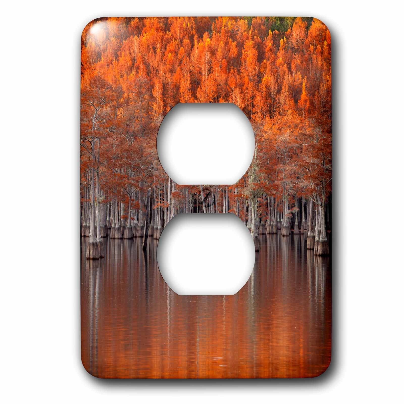 3dRose LSP_278906_6 USA, Georgia, Twin City, Cypress Trees in The Fall at Sunset Plug Outlet Cover,