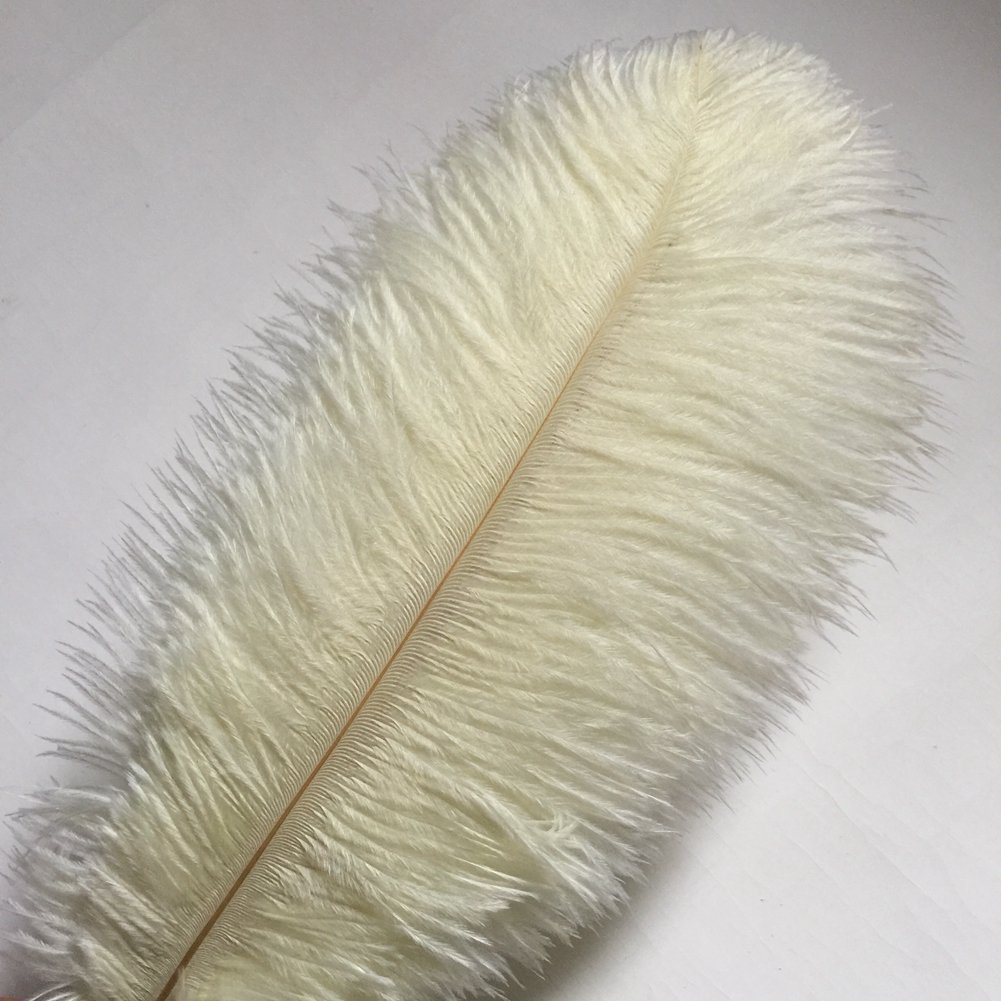 MELADY Pack of 100pcs 19-21inches Natural Ostrich Feathers Perfect for Home Wedding Party Decoration (Ivory)