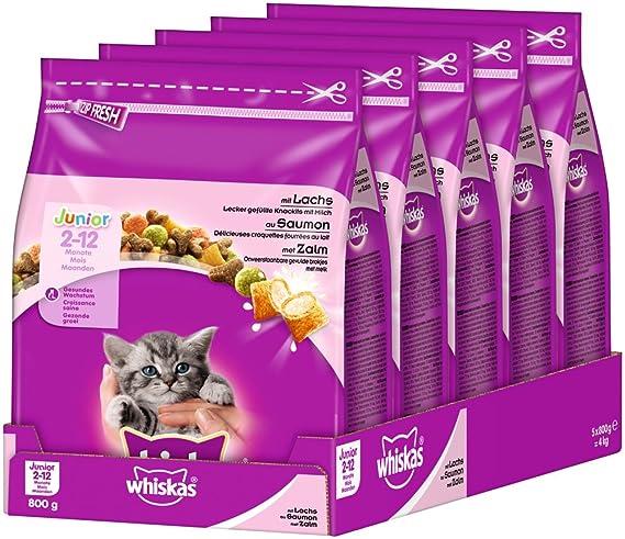 Whiskas, Comida Seca para Gatos, junior de 2 a 12 meses, pack de 6: Amazon.es: Productos para mascotas