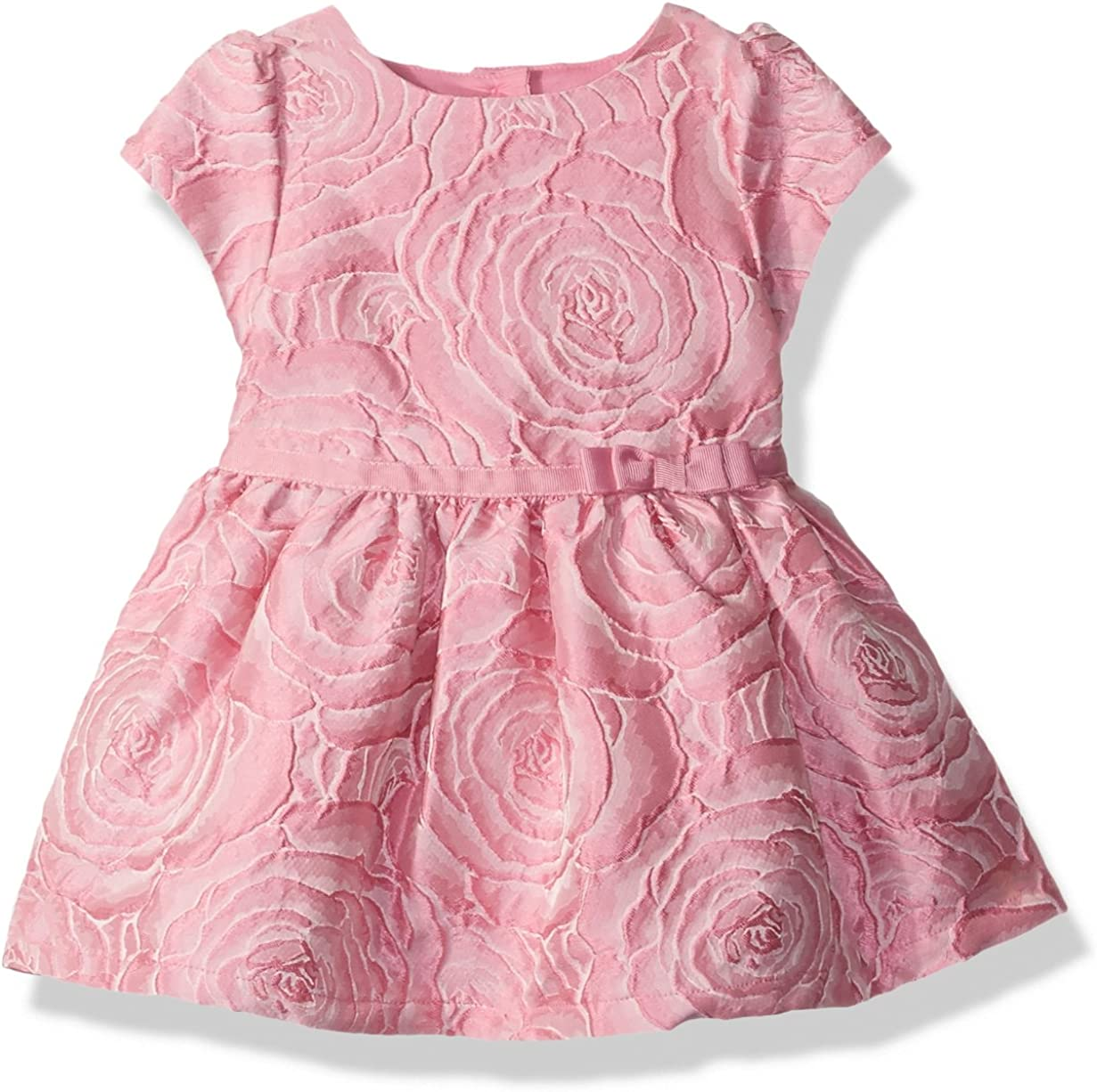 The Childrens Place Baby Girls JACQUARD DRESS 2