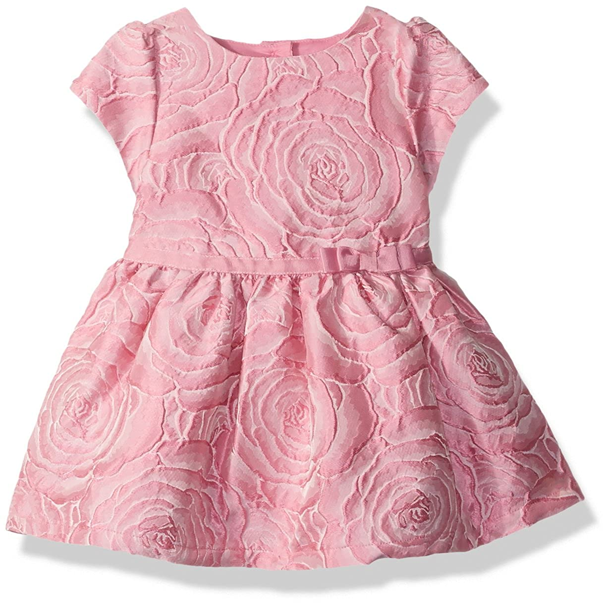 The Children's Place Baby Girls' JACQUARD DRESS 2 2090534