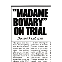 Madame Bovary on Trial (English Edition)