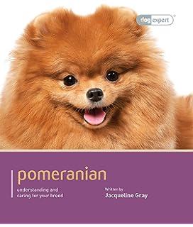 Buy Teacup Pomeranians Miniature Pomeranian Or Teacup Pomeranian