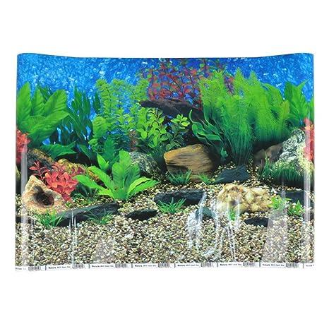 freahap Acuario fondo de doble cara Póster de Fish Tank Decoración
