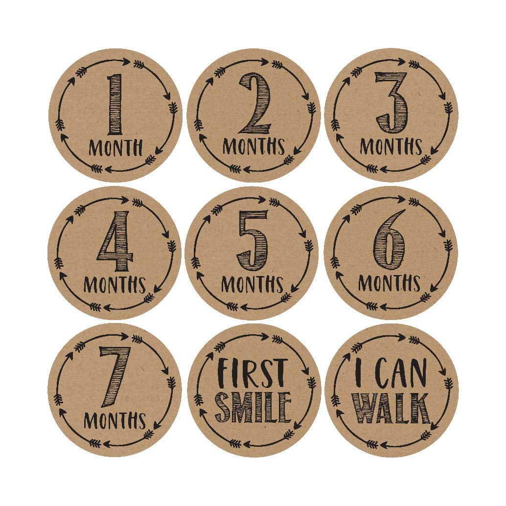 16 Rustic Baby Milestone Stickers, 12 Monthly Photo Picture Props for Girl or Boy Infant Onesie, 1st Year Belly Decals, Scrapbook Memory Registry Gift, Best Shower Basket Present, Unisex Birth Months Hadley Designs