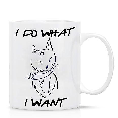 CUFUN Art Hago lo Que Quiero Gato con Bufanda Taza de café Divertida Taza de té