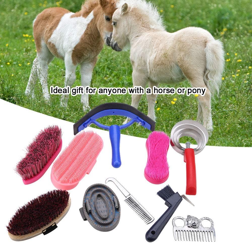 YYRL Aelao Horse Brush Equestrain-Reinigungswerkzeugsatz 10-teiliges Pferdepflege-Pflegeset Equestrain Brush Curry Comb Horse-Reinigungswerkzeugsatz