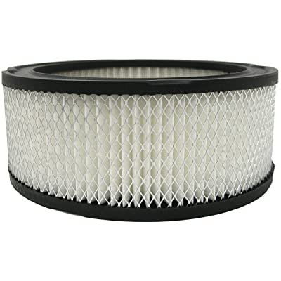 Luber-finer AF148 Heavy Duty Air Filter: Automotive