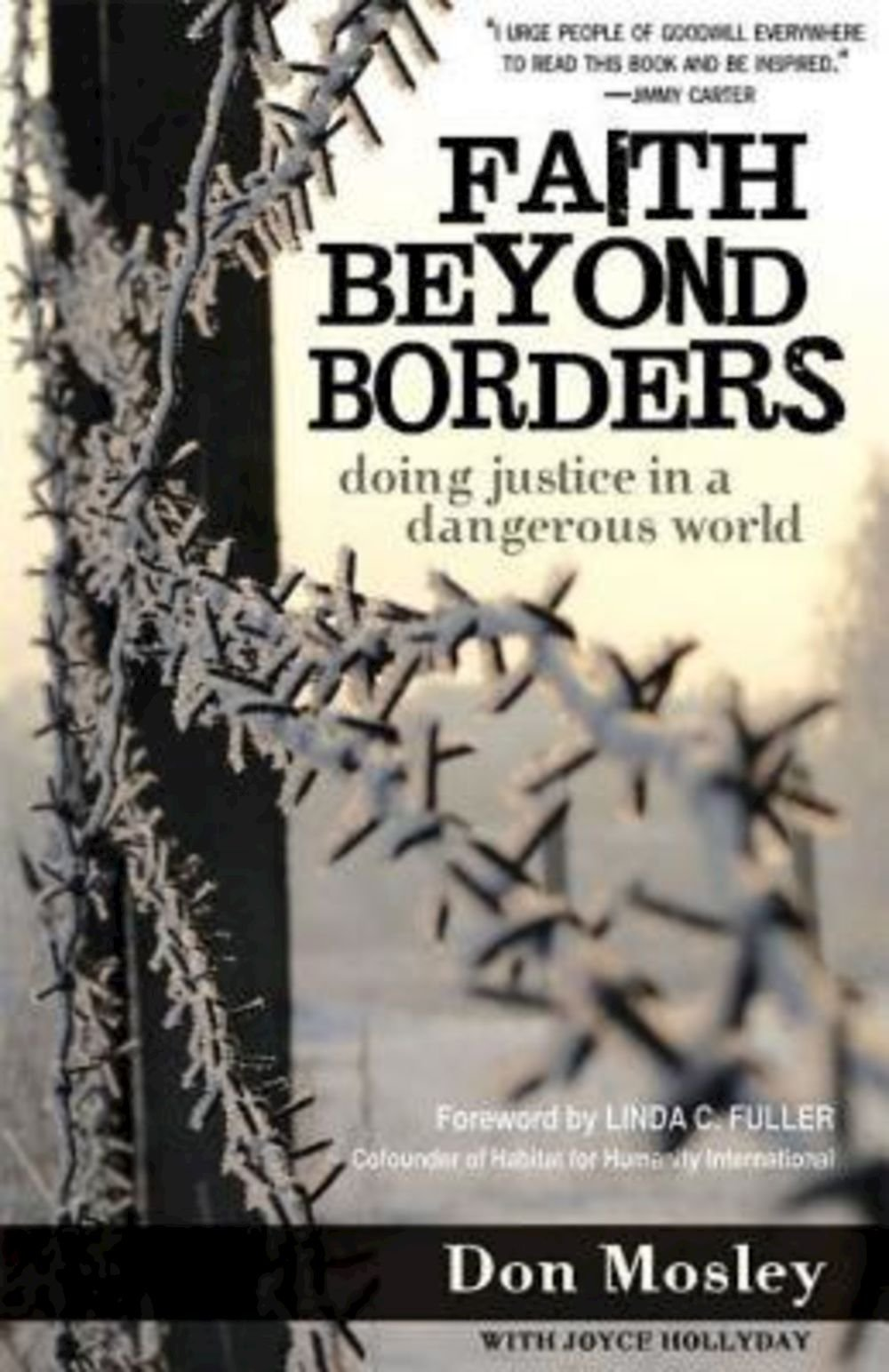 Download Faith Beyond Borders: Doing Justice in a  Dangerous World pdf