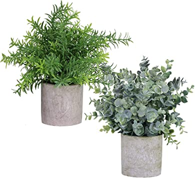 Amazon Com Winlyn 2 Pack Artificial Potted Plants Faux Eucalyptus Rosemary Greenery In Pots Small Houseplants 8 3 9 Tall For Indoor Greenery Tabletop Décor Centerpiece Furniture Decor