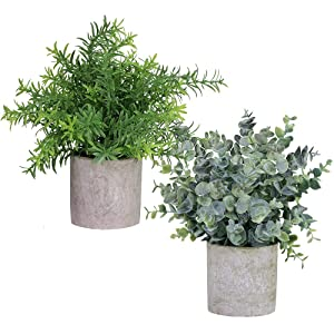 "Winlyn 2 Pack Artificial Potted Plants Faux Eucalyptus & Rosemary Greenery in Pots Small Houseplants 8.3""-9"" Tall for Indoor Greenery Tabletop Décor Centerpiece"
