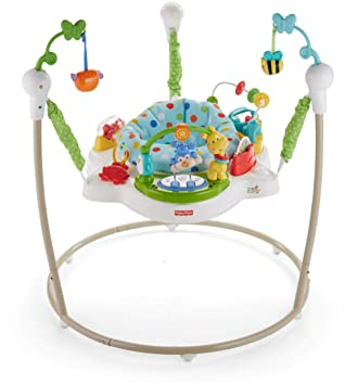 95662d2847ab Amazon.com   Fisher-Price Zoo Party Jumperoo   Baby