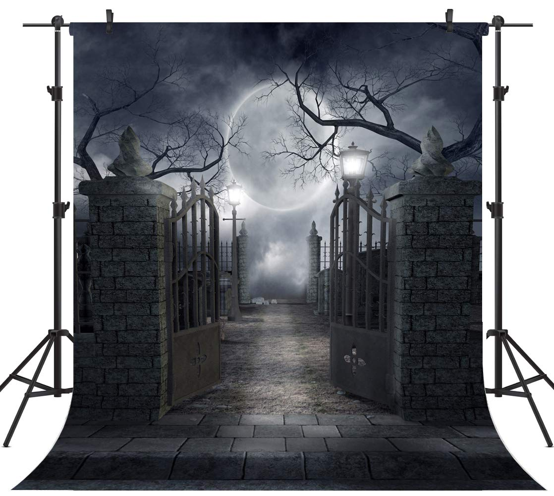 OUYIDA 10X10FT Halloween Theme Pictorial Cloth Customized Photography Backdrop Background Studio Prop TP17C by OUYIDA